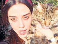 Kedi firarda, 'Anne' çekimleri iptal!