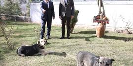 AK Parti'nin İzmir adayı Nihat Zeybekci'den Sözcü'ye ziyaret