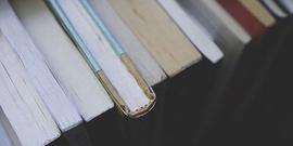 'Pedofili' içeren ifadelerin bulunduğu kitabın yazarına soruşturma