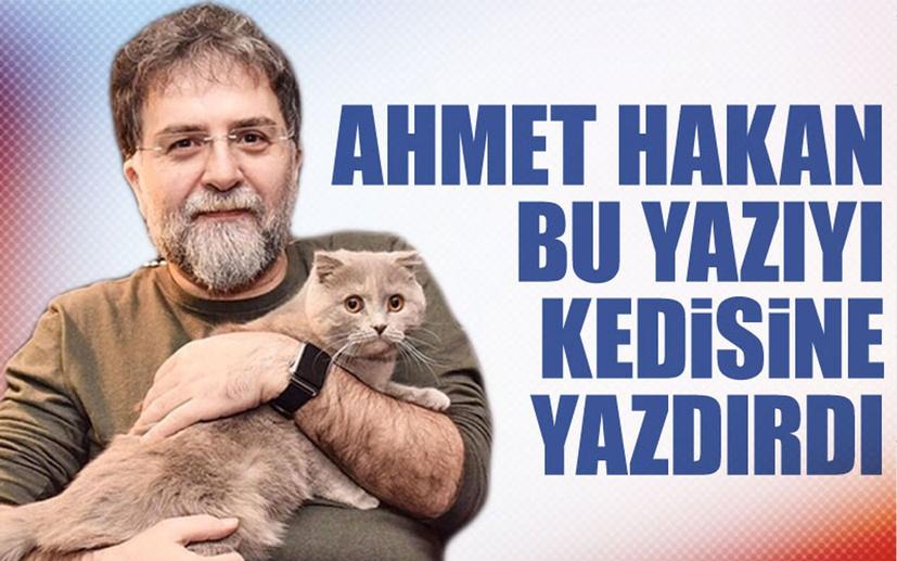 Ahmet Hakan, bu yazıyı kedisi Sekter'e yazdırdı