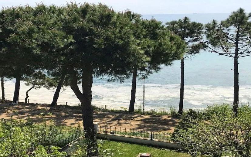 """Marmara'nın kâbusu Müsilaj endişesi Silivri'deki balıkçıları ve yazlıkçıları vurdu: """"Saçlarımızı yapış yapış yapıyor"""""""