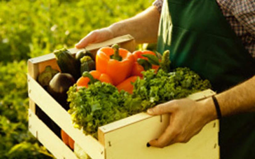 Kilis'te organik üretime büyük destek! İmzalar atıldı